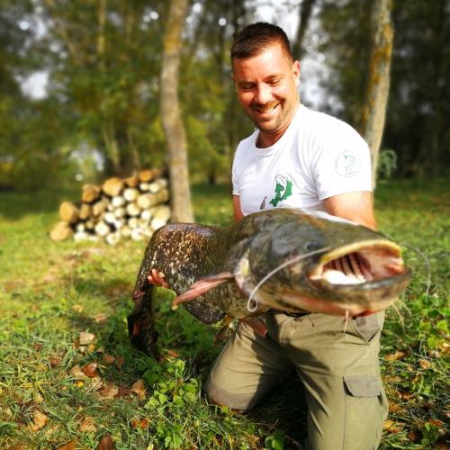 Ragadozó halaink ! :) Süllők, harcsák, csukák :) 2